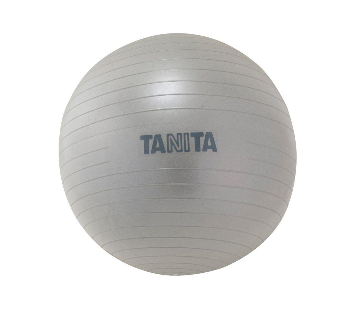 タニタ ジムボール65cm