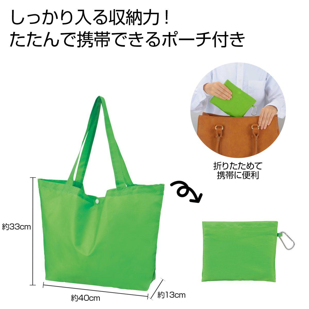 Ecolor 折りたたみビッグバッグ(グリーン)